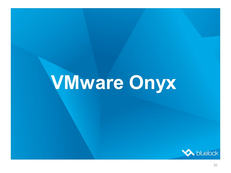 VMware Onyx 30