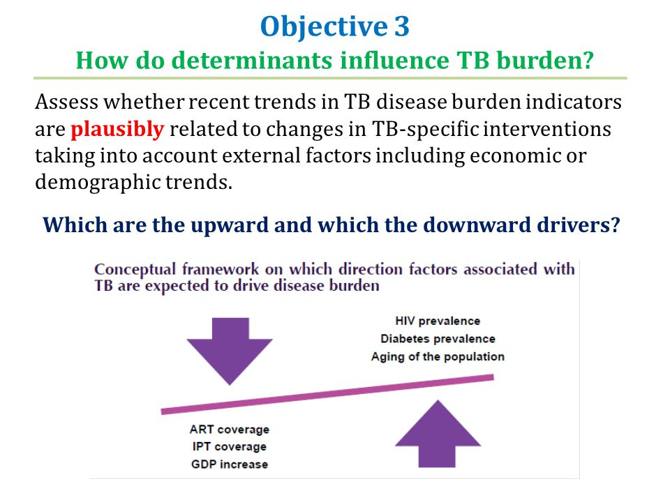 Objective 3 How do determinants influence TB burden.