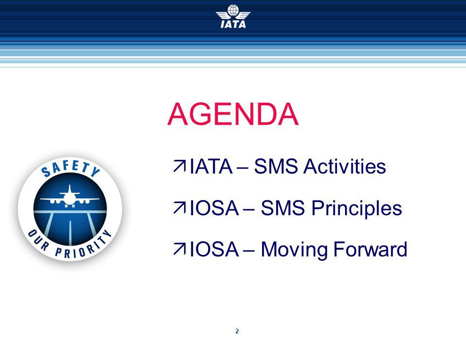 2  IATA – SMS Activities  IOSA – SMS Principles  IOSA – Moving Forward AGENDA