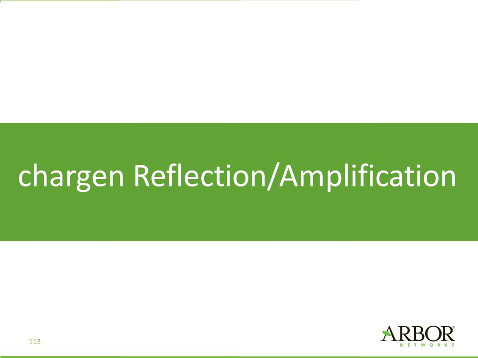 chargen Reflection/Amplification 113