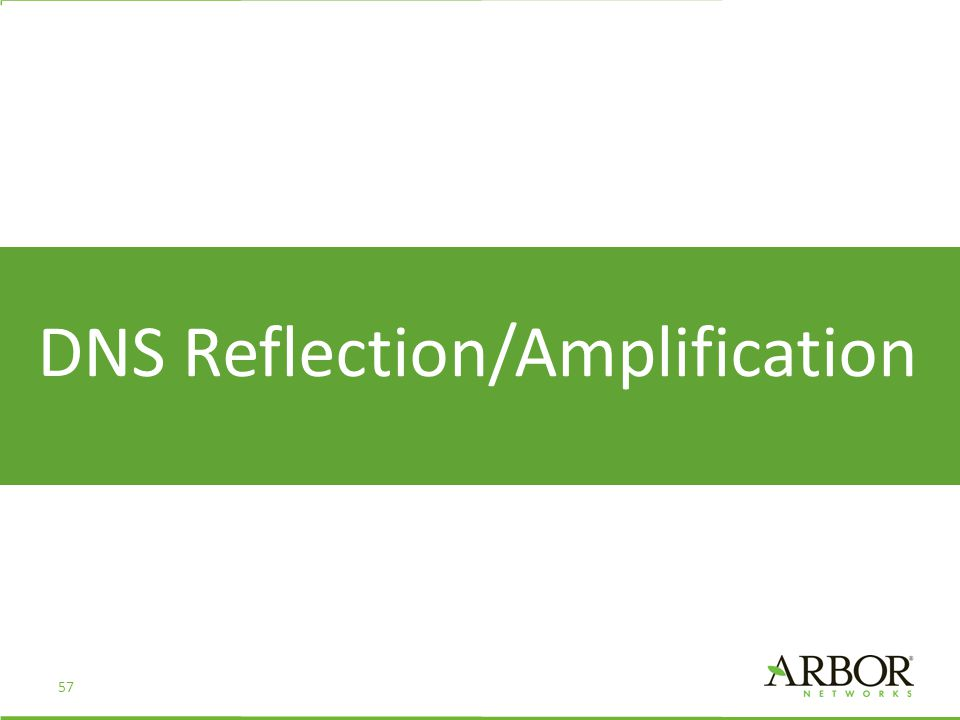DNS Reflection/Amplification 57