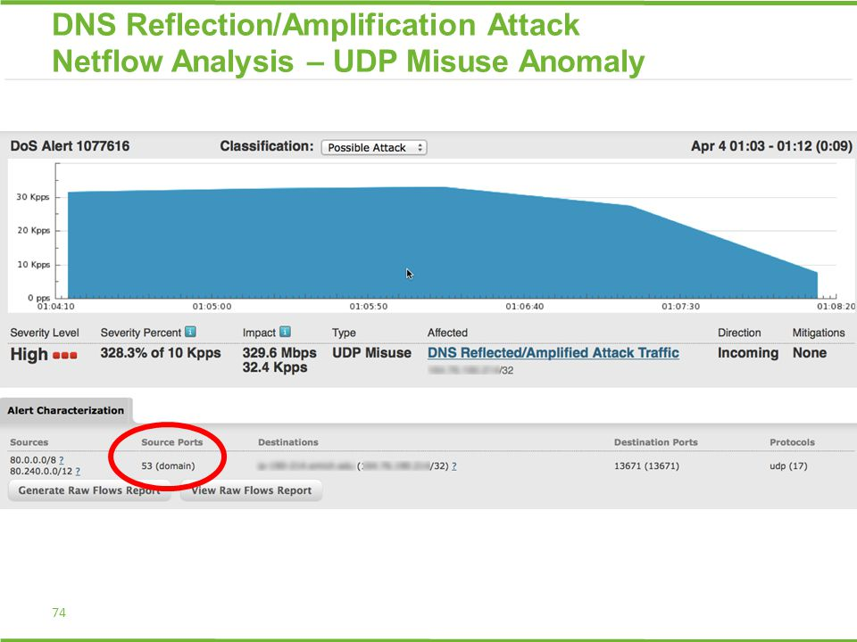 74 DNS Reflection/Amplification Attack Netflow Analysis – UDP Misuse Anomaly