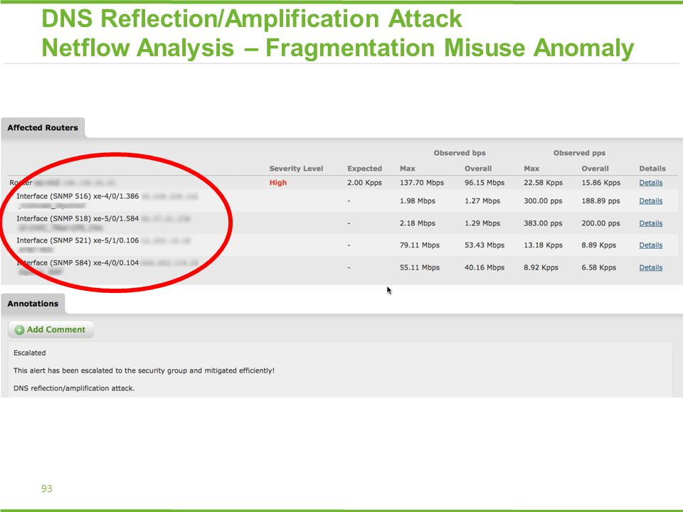 93 DNS Reflection/Amplification Attack Netflow Analysis – Fragmentation Misuse Anomaly
