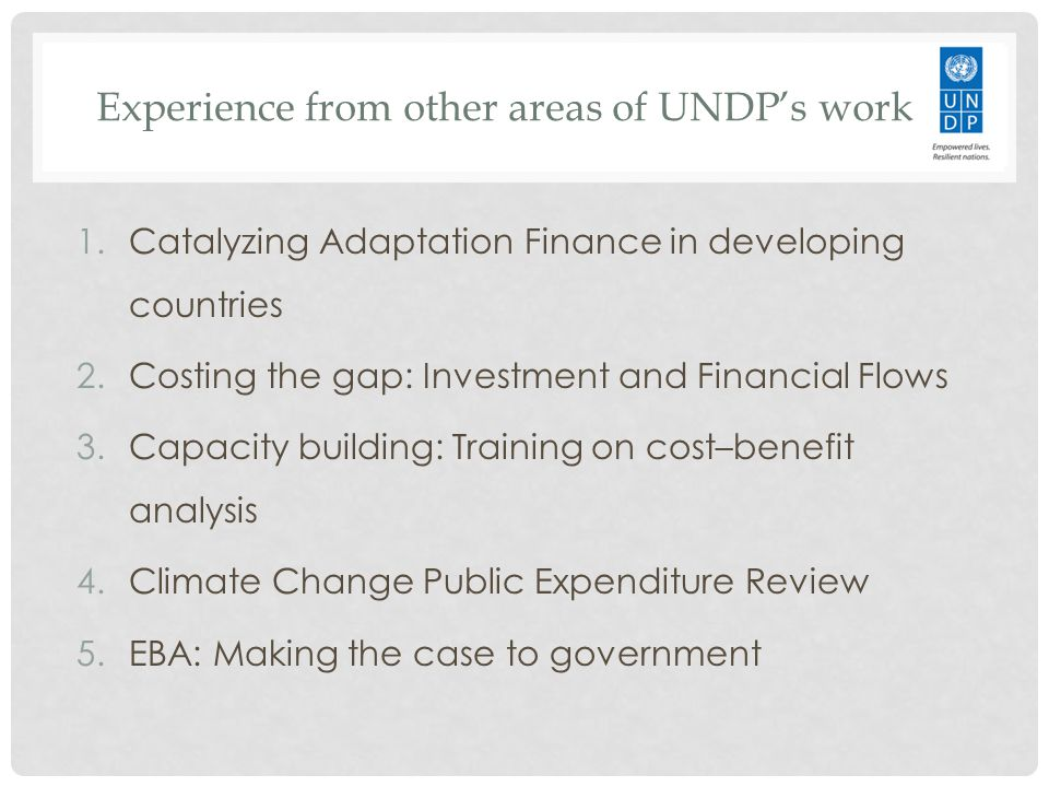 Experience from other areas of UNDP's work 1.Catalyzing Adaptation Finance in developing countries 2.Costing the gap: Investment and Financial Flows 3