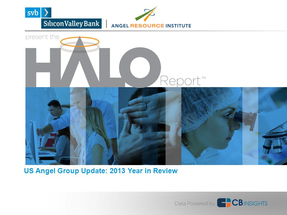 US Angel Group Update: 2013 Year in Review