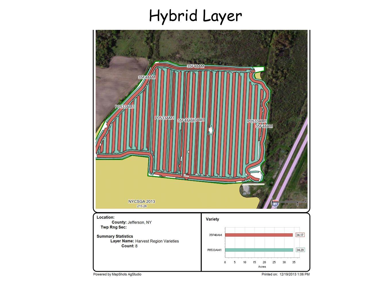 Hybrid Layer
