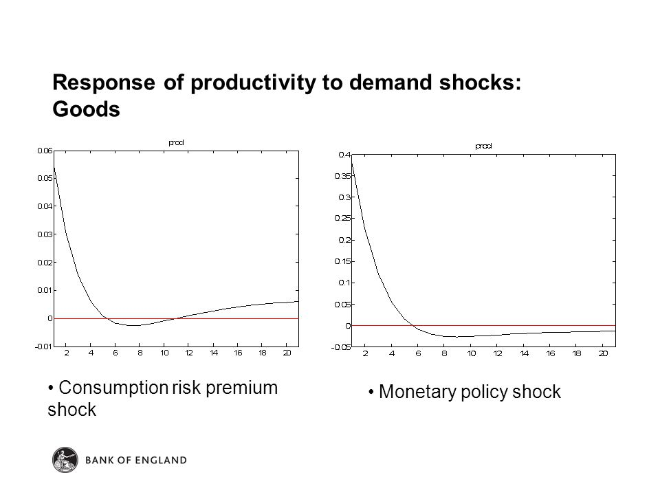 Response of productivity to demand shocks: Goods Consumption risk premium shock Monetary policy shock