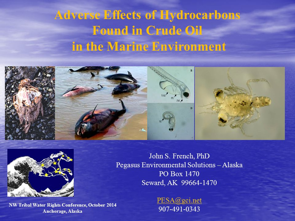 Adverse Effects of Hydrocarbons Found in Crude Oil in the Marine Environment John S.