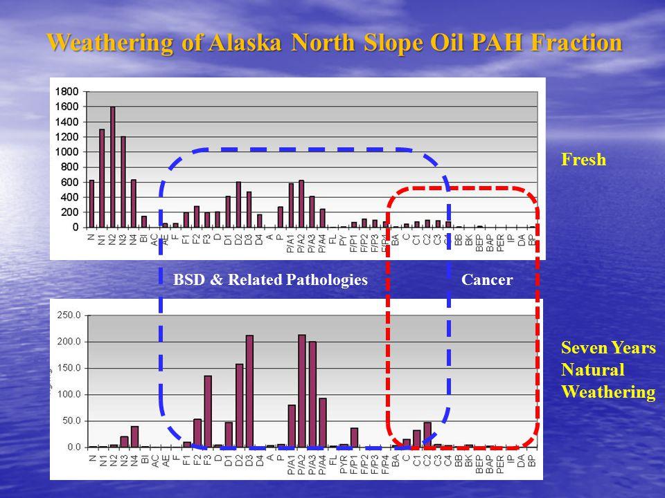 Weathering of Alaska North Slope Oil PAH Fraction Fresh Seven Years Natural Weathering BSD & Related PathologiesCancer