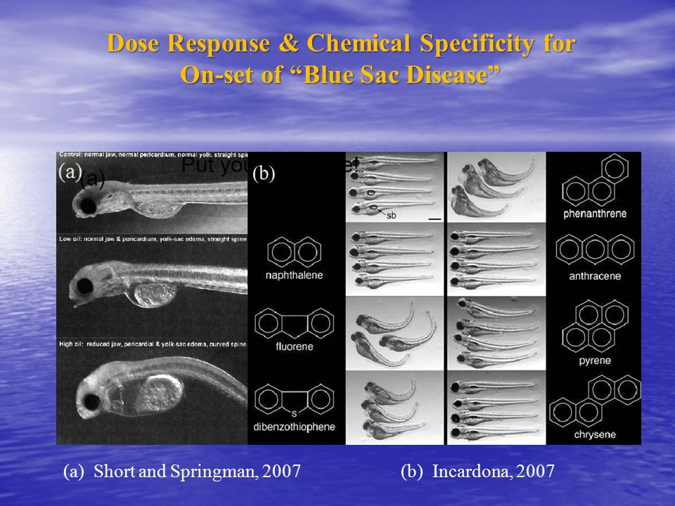 Dose Response & Chemical Specificity for On-set of Blue Sac Disease (a) Short and Springman, 2007(b) Incardona, 2007
