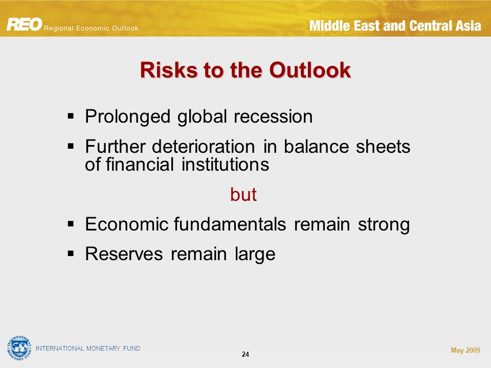 INTERNATIONAL MONETARY FUND May Risks to the Outlook  Prolonged global recession  Further deterioration in balance sheets of financial institutions but  Economic fundamentals remain strong  Reserves remain large