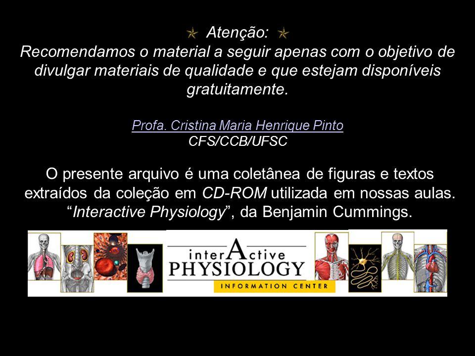 """O presente arquivo é uma coletânea de figuras e textos extraídos da coleção em CD-ROM utilizada em nossas aulas. """"Interactive Physiology"""", da Benjamin"""