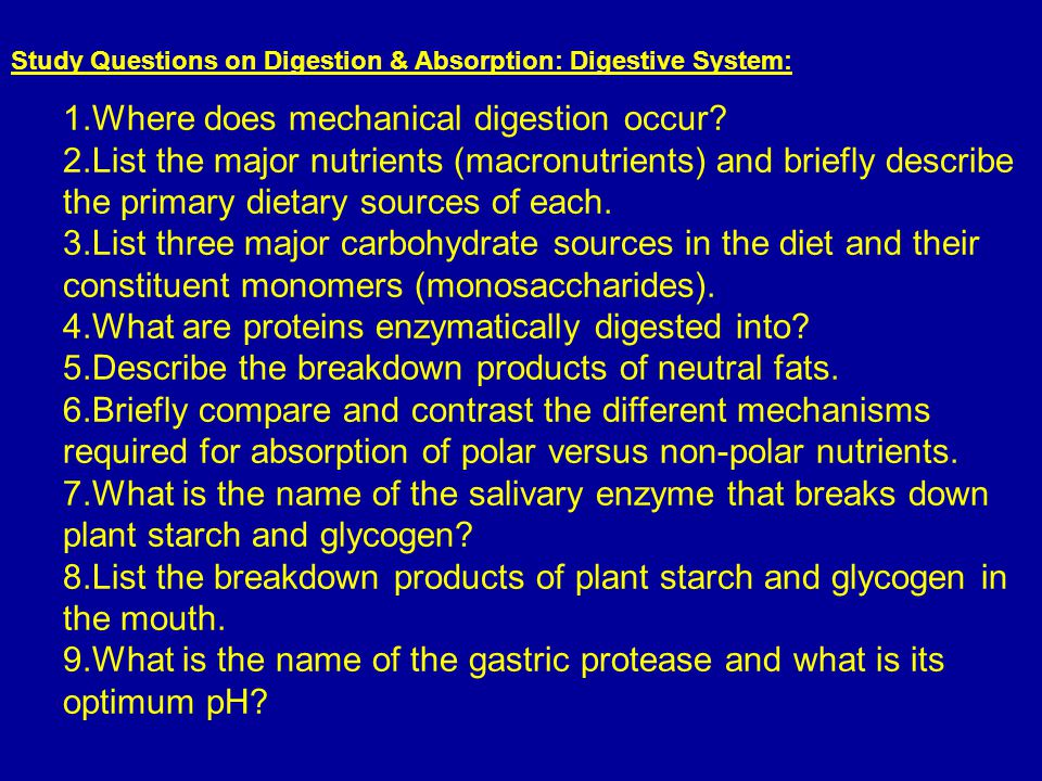 Study Questions on Digestion & Absorption: Digestive System: 1.Where does mechanical digestion occur? 2.List the major nutrients (macronutrients) and