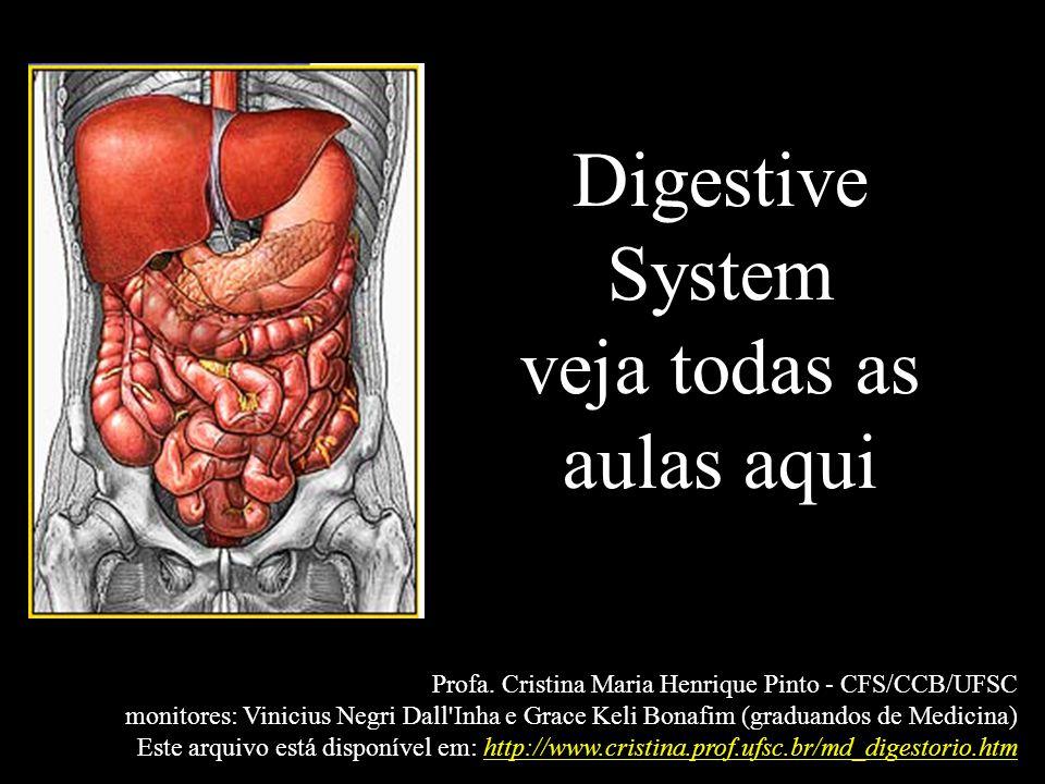 Digestive System veja todas as aulas aqui Profa. Cristina Maria Henrique Pinto - CFS/CCB/UFSC monitores: Vinicius Negri Dall'Inha e Grace Keli Bonafim