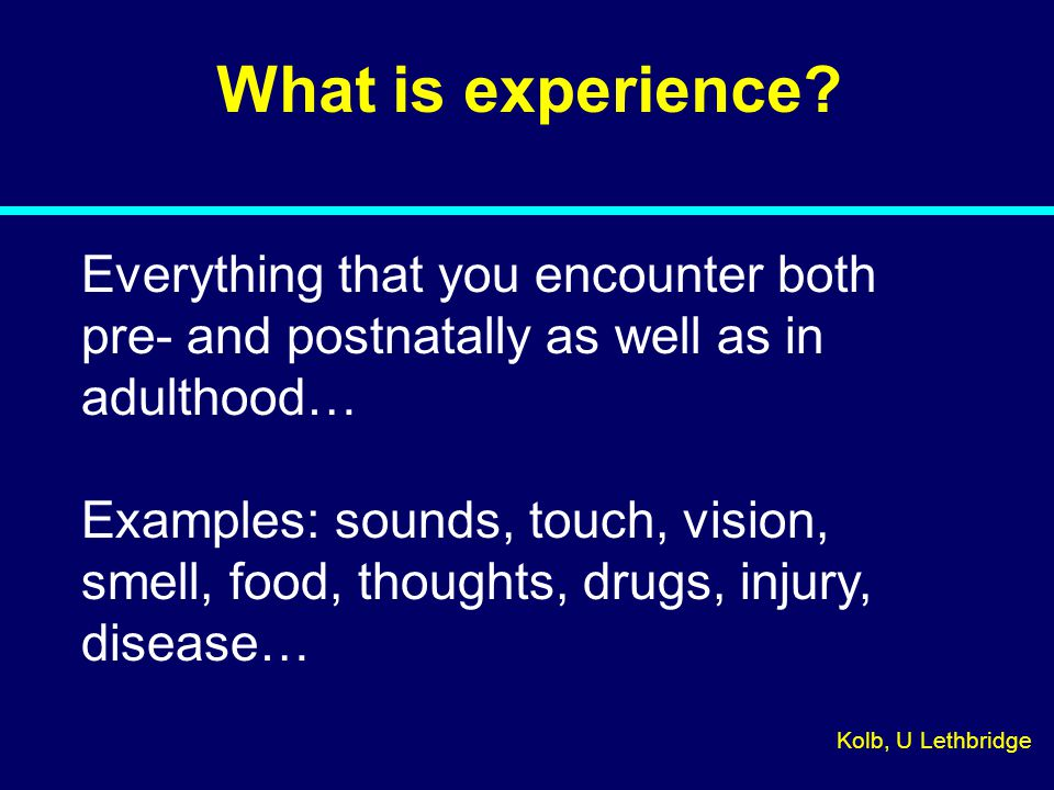What is experience? Everything that you encounter both pre- and postnatally as well as in adulthood… Examples: sounds, touch, vision, smell, food, tho