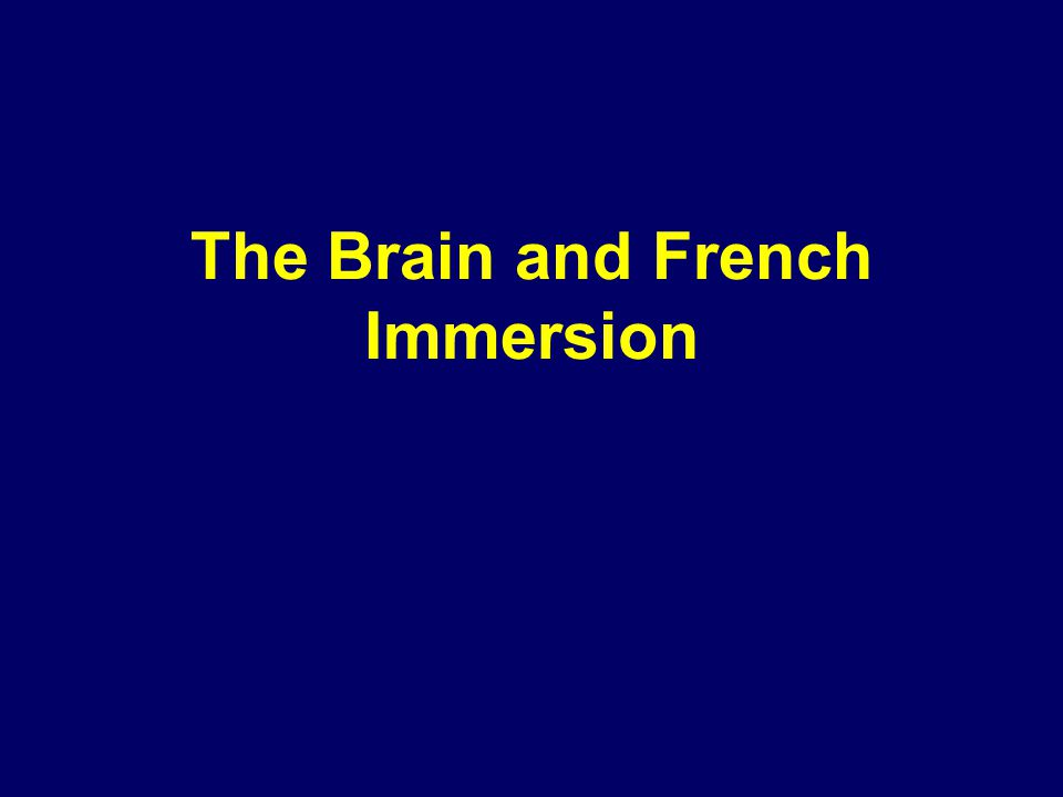 The Brain and French Immersion 07-105
