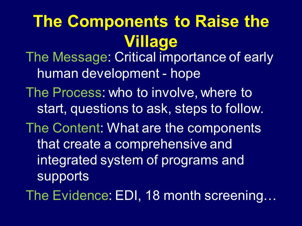 The Components to Raise the Village The Message: Critical importance of early human development - hope The Process: who to involve, where to start, questions to ask, steps to follow.
