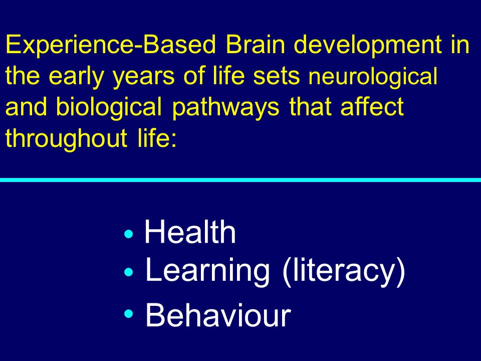 03-080 Health Learning (literacy) Behaviour Experience-Based Brain development in the early years of life sets neurological and biological pathways th