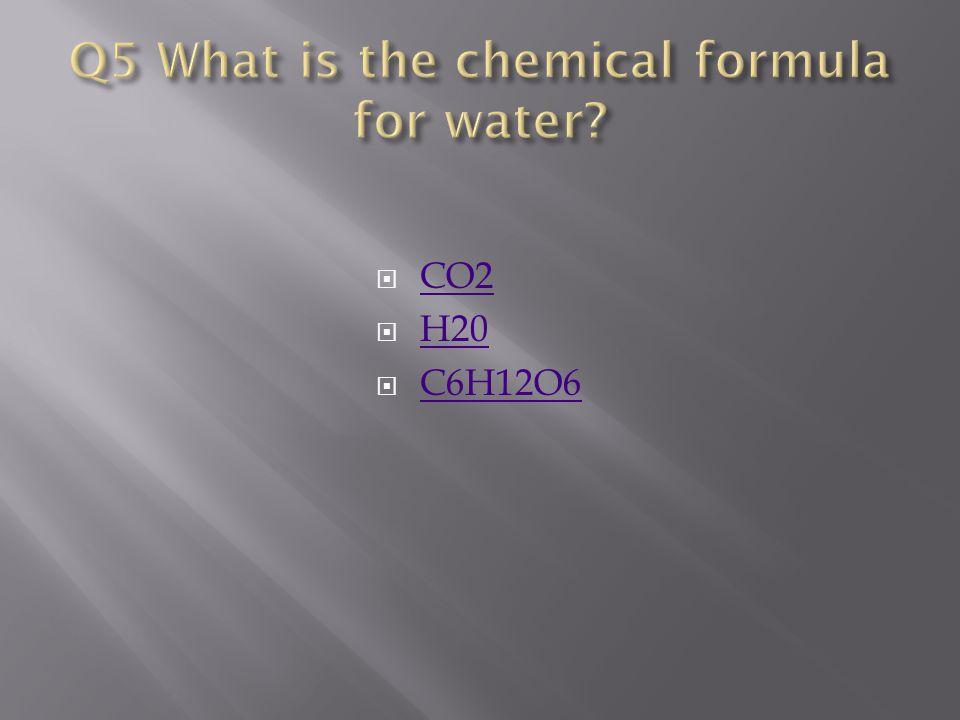  CO2 CO2  H20 H20  C6H12O6 C6H12O6