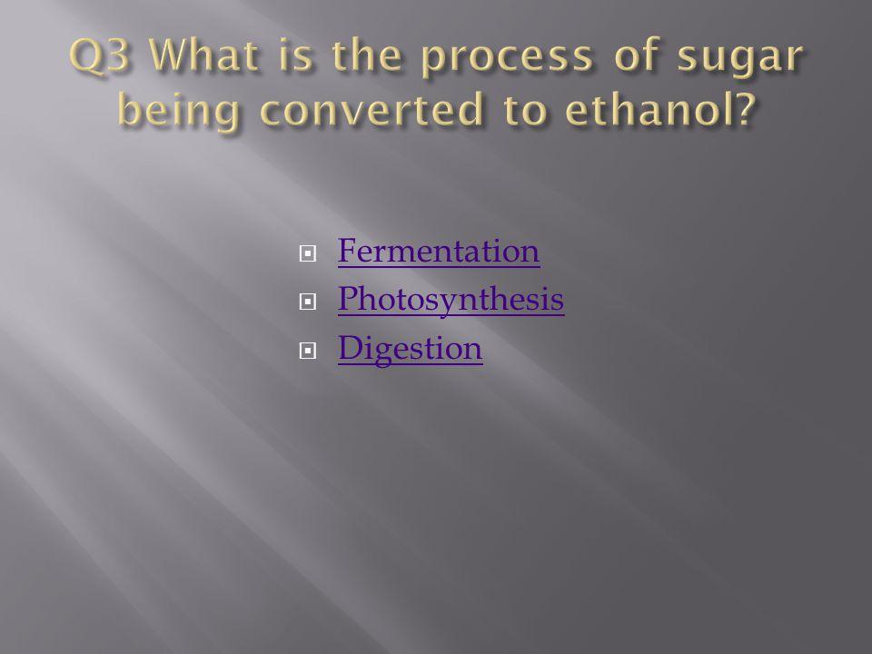  Fermentation Fermentation  Photosynthesis Photosynthesis  Digestion Digestion