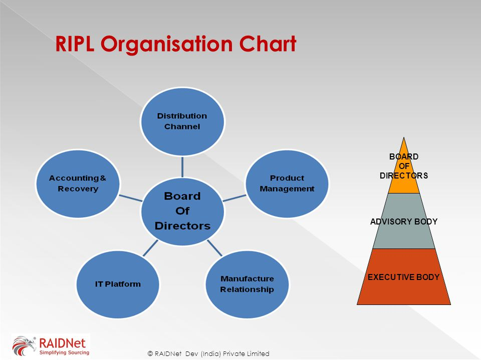RIPL Organisation Chart © RAIDNet Dev (India) Private Limited BOARD OF DIRECTORS ADVISORY BODY EXECUTIVE BODY