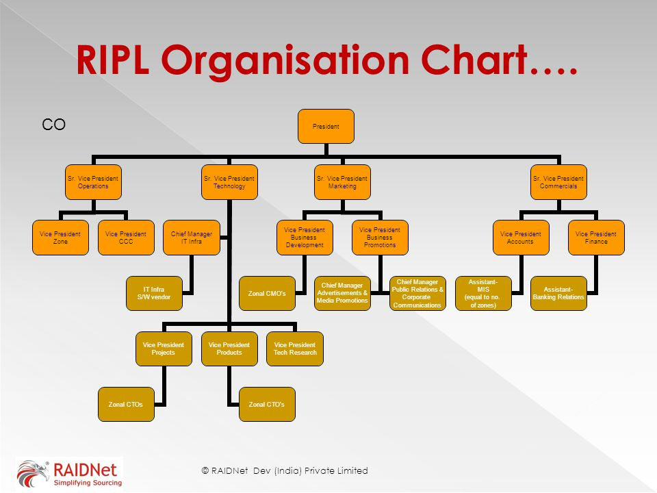 RIPL Organisation Chart…. © RAIDNet Dev (India) Private Limited CO