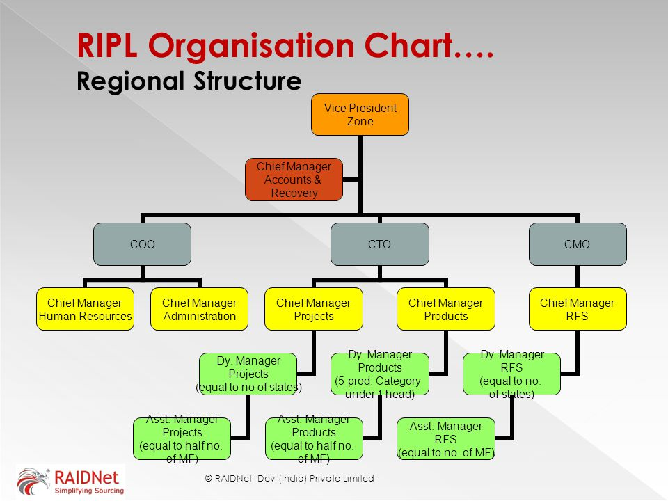 RIPL Organisation Chart…. Regional Structure © RAIDNet Dev (India) Private Limited Vice President Zone COO Chief Manager Human Resources Chief Manager