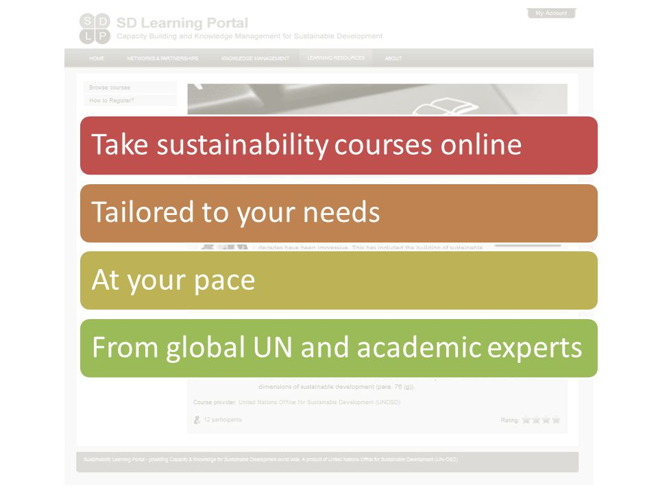Take sustainability courses onlineTailored to your needsAt your paceFrom global UN and academic experts