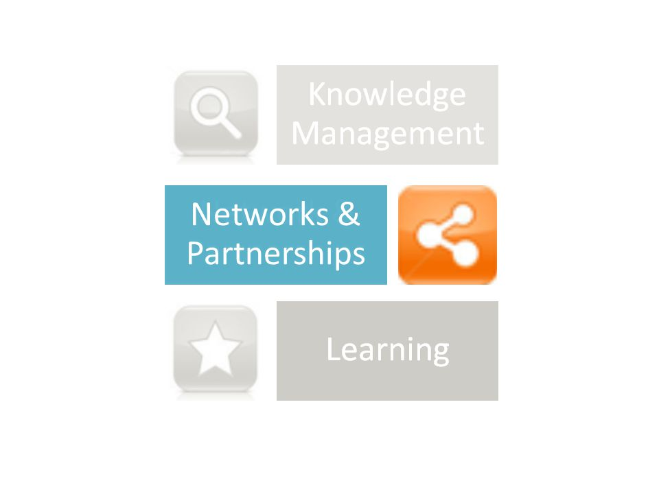 Networks & Partnerships