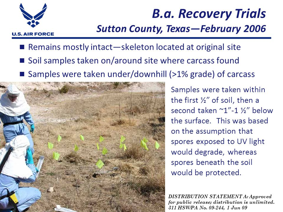 DISTRIBUTION STATEMENT A: Approved for public release; distribution is unlimited. 311 HSW/PA No. 09-244, 1 Jun 09 Remains mostly intact—skeleton locat