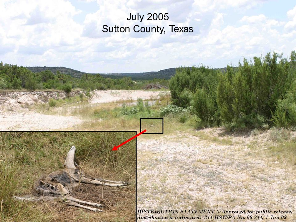 DISTRIBUTION STATEMENT A: Approved for public release; distribution is unlimited. 311 HSW/PA No. 09-244, 1 Jun 09 July 2005 Sutton County, Texas DISTR