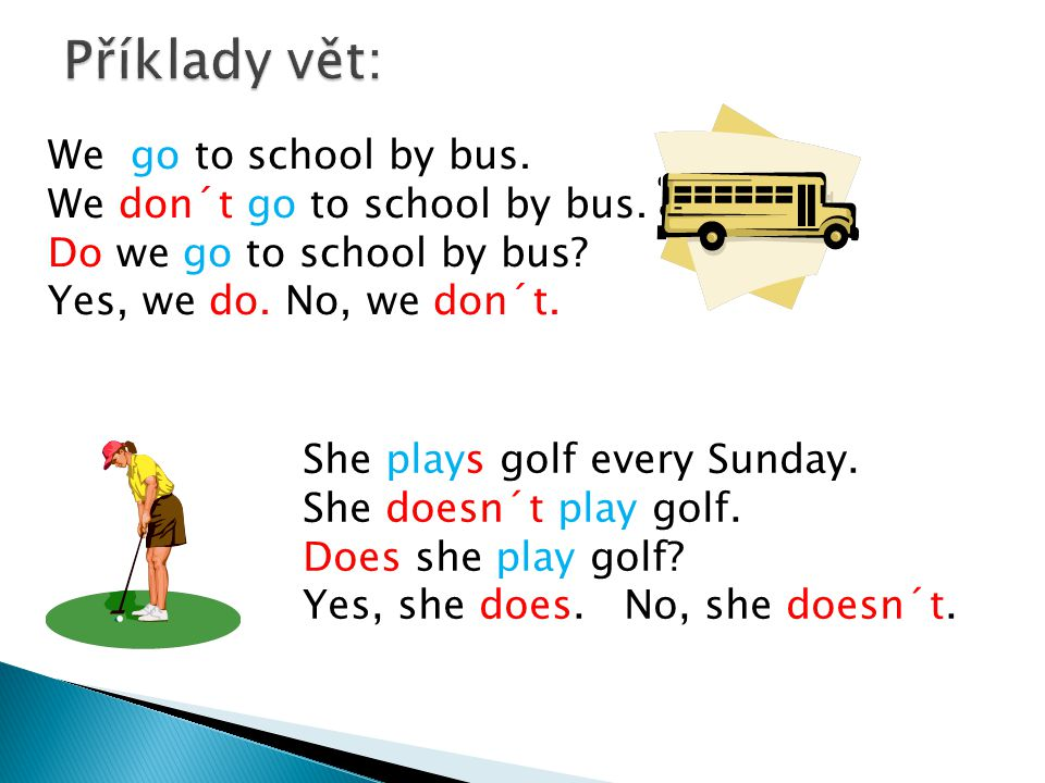 We go to school by bus. We don´t go to school by bus.
