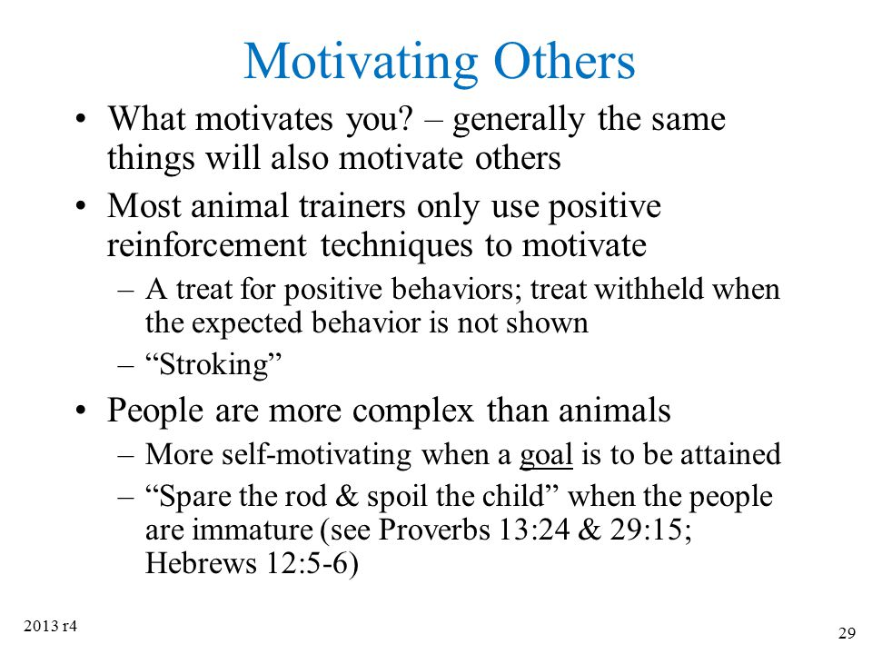 Motivating Others What motivates you? – generally the same things will also motivate others Most animal trainers only use positive reinforcement techn