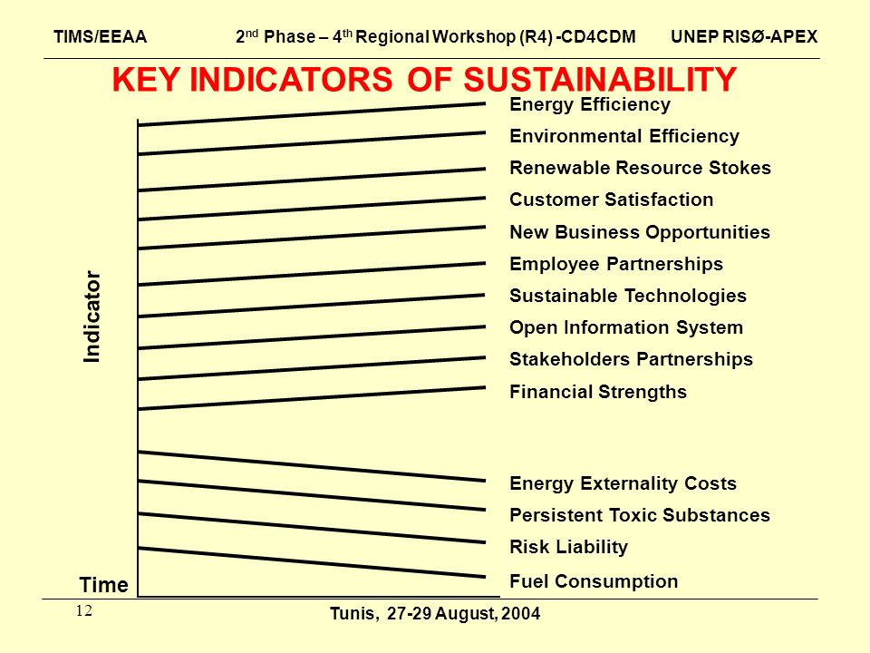 12 KEY INDICATORS OF SUSTAINABILITY Energy Efficiency Environmental Efficiency Renewable Resource Stokes Customer Satisfaction New Business Opportunit