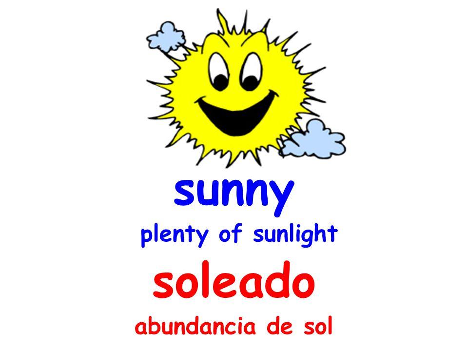 sunny plenty of sunlight soleado abundancia de sol