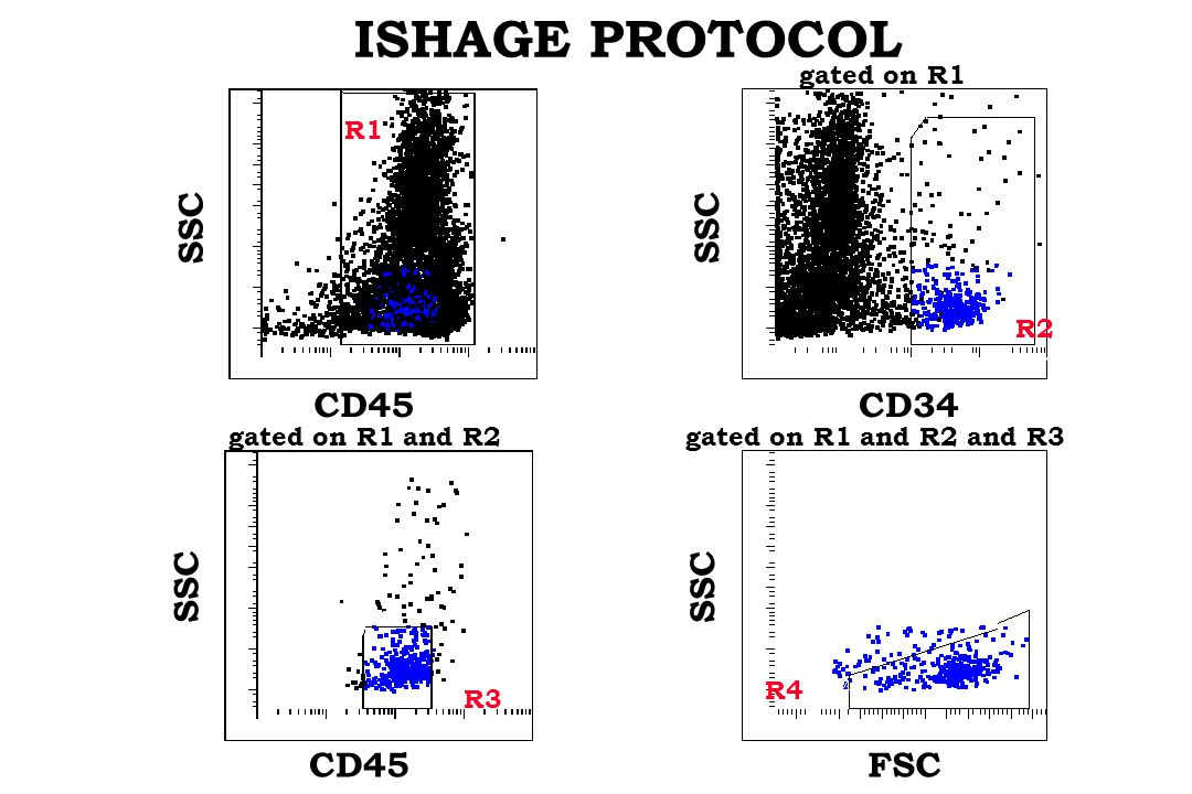 ISHAGE PROTOCOL CD45 SSC R1 CD34 SSC R2 CD45 SSC FSC SSC R3 R4 gated on R1 and R2gated on R1 and R2 and R3 gated on R1