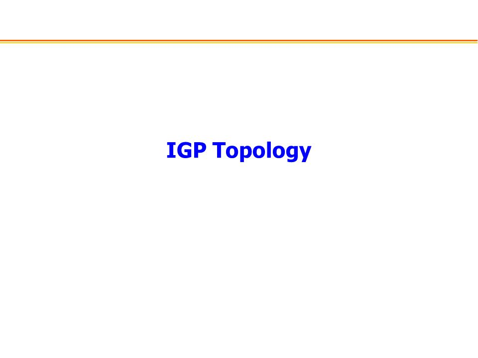 IGP Topology