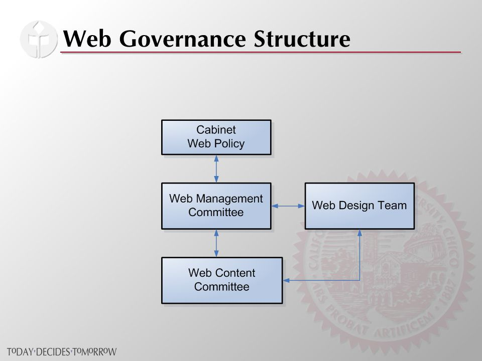 Web Governance Structure