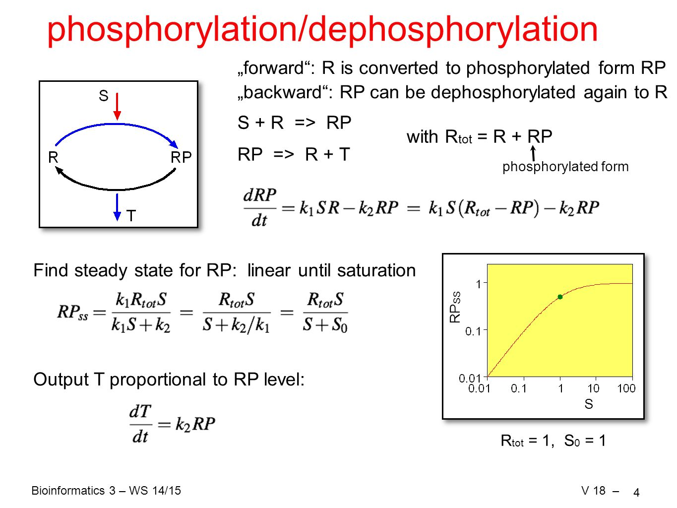 "Bioinformatics 3 – WS 14/15V 18 – 4 S RP SS phosphorylation/dephosphorylation ""forward : R is converted to phosphorylated form RP ""backward : RP can be dephosphorylated again to R S + R => RP RP => R + T with R tot = R + RP Find steady state for RP: linear until saturation R tot = 1, S 0 = 1 Output T proportional to RP level: phosphorylated form"