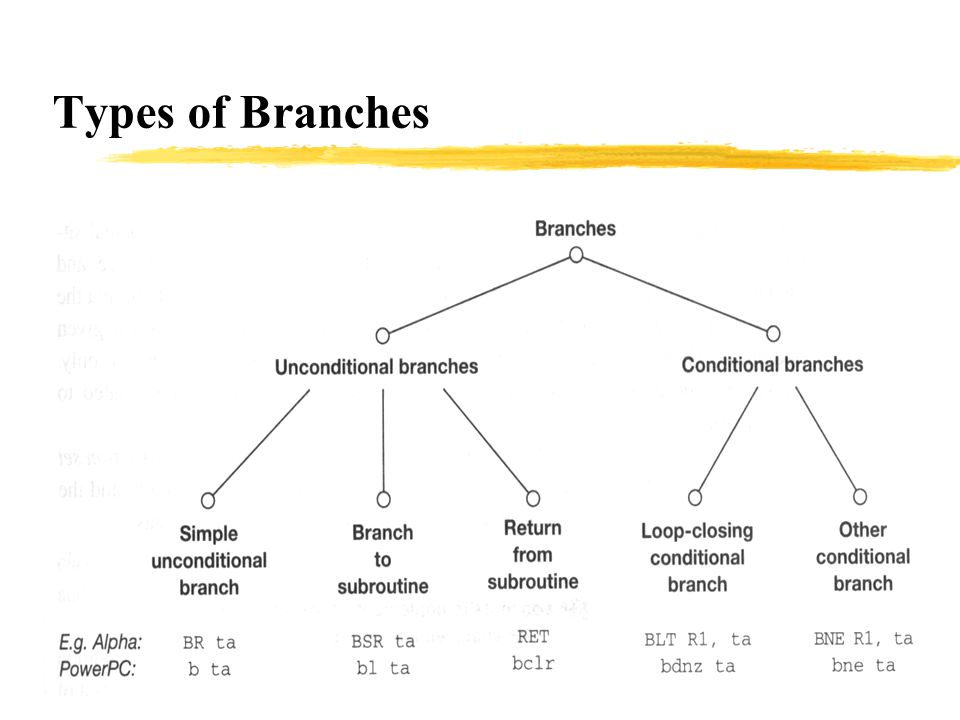 Types of Branches