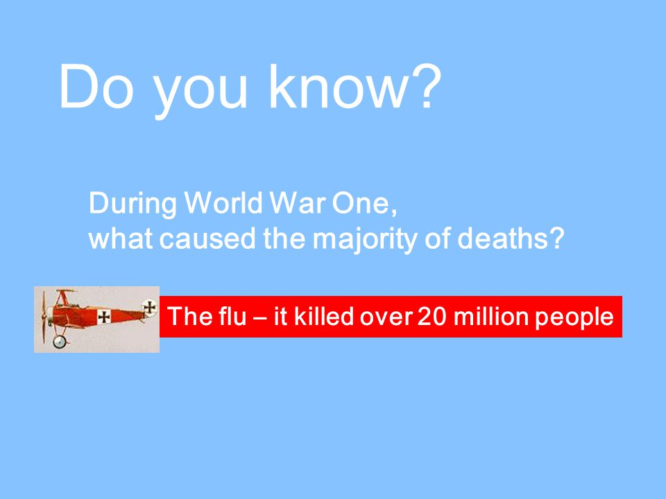 Do you know. During World War One, what caused the majority of deaths.
