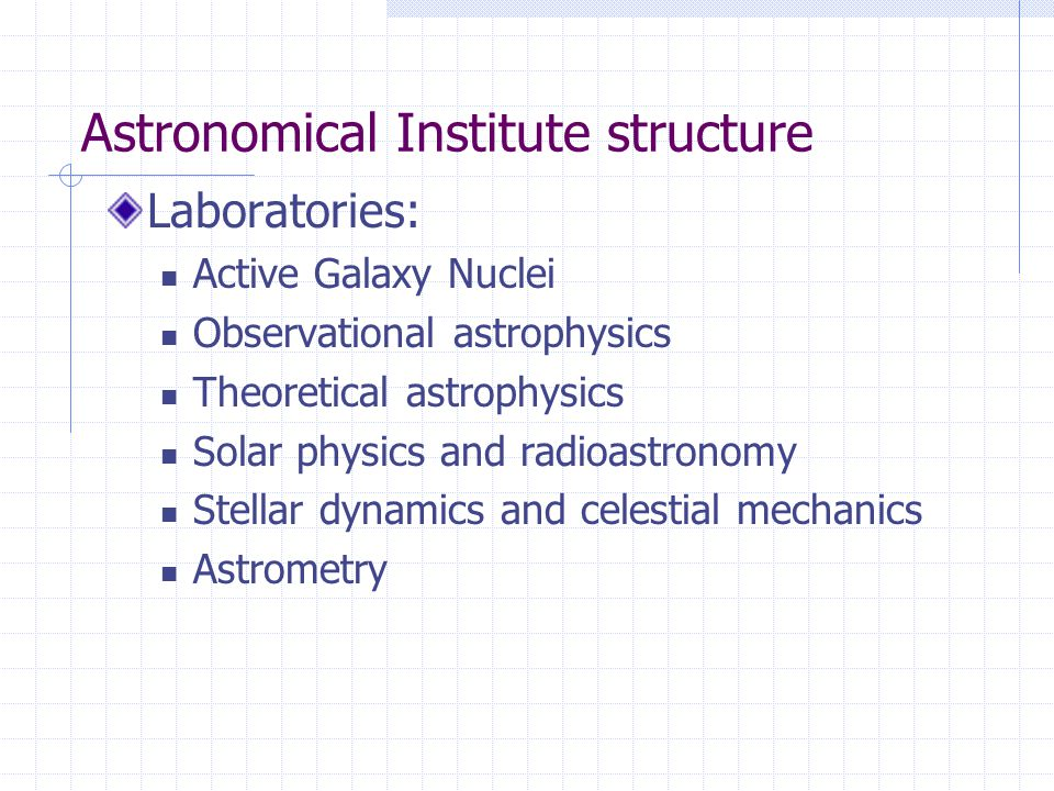 Astronomical Institute structure Laboratories: Active Galaxy Nuclei Observational astrophysics Theoretical astrophysics Solar physics and radioastronomy Stellar dynamics and celestial mechanics Astrometry