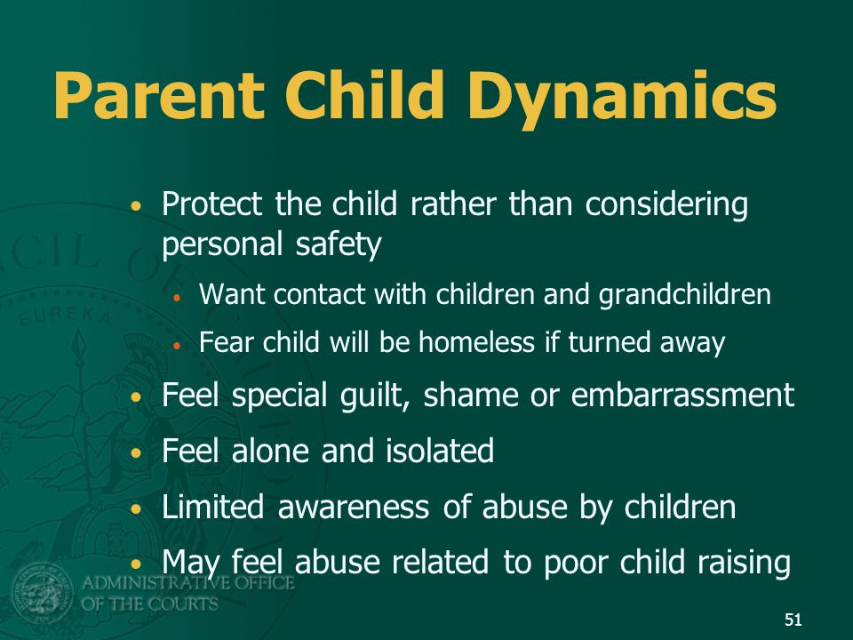 Parent Child Dynamics Protect the child rather than considering personal safety Want contact with children and grandchildren Fear child will be homele