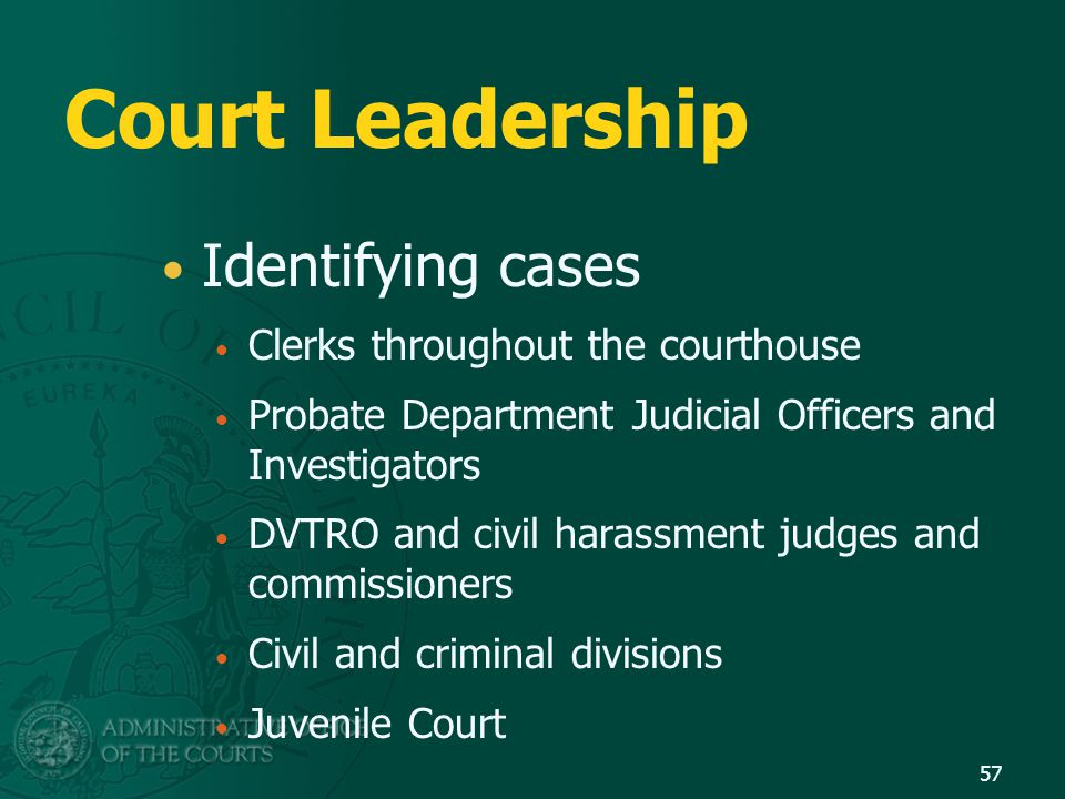 Court Leadership Identifying cases Clerks throughout the courthouse Probate Department Judicial Officers and Investigators DVTRO and civil harassment