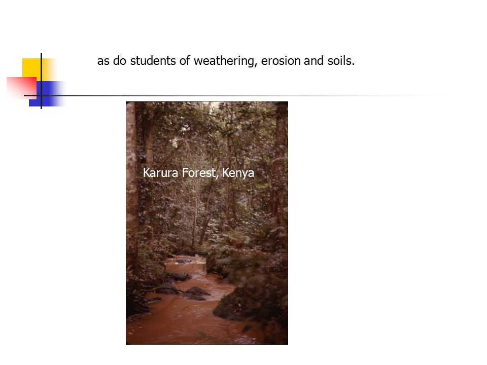 as do students of weathering, erosion and soils. Karura Forest, Kenya