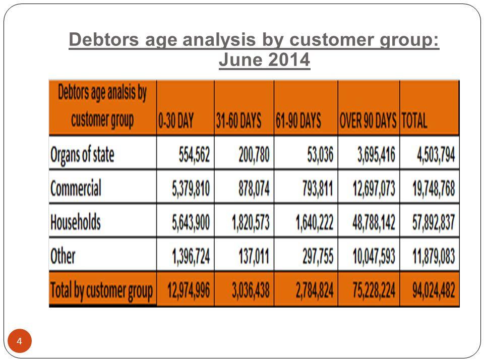 Debtors age analysis by customer group: June 2014 4