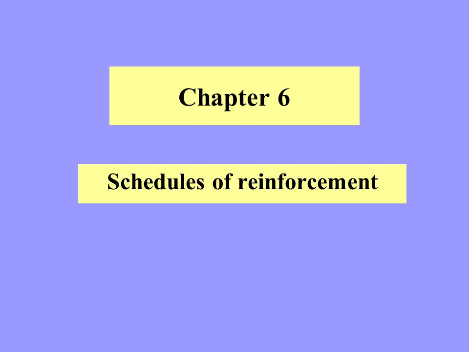 Chapter 6 Schedules of reinforcement