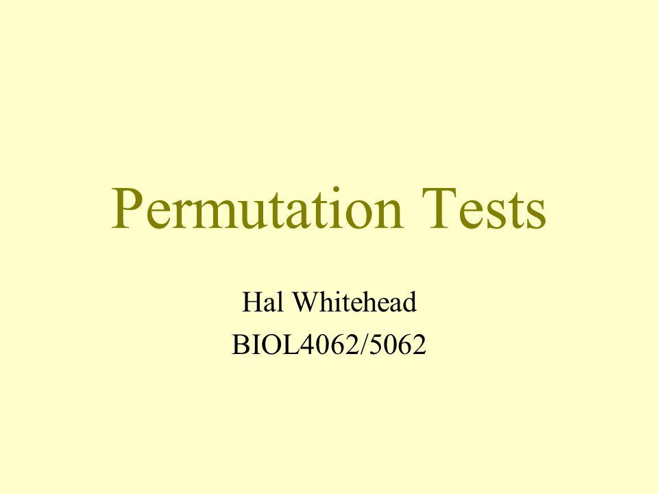 Permutation Tests Hal Whitehead BIOL4062/5062