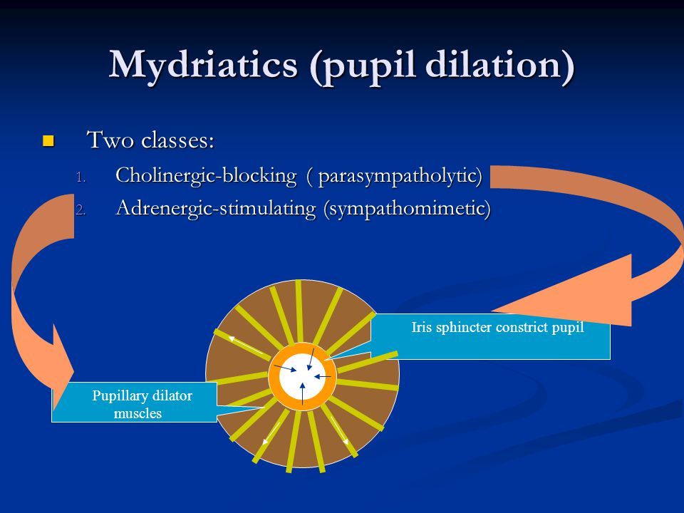 Mydriatics (pupil dilation) Two classes: Two classes: 1.