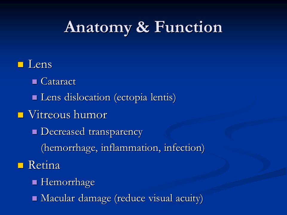 Anatomy & Function Lens Lens Cataract Cataract Lens dislocation (ectopia lentis) Lens dislocation (ectopia lentis) Vitreous humor Vitreous humor Decreased transparency Decreased transparency (hemorrhage, inflammation, infection) Retina Retina Hemorrhage Hemorrhage Macular damage (reduce visual acuity) Macular damage (reduce visual acuity)